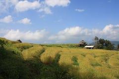 Όμορφος μπλε ουρανός, άσπρα σύννεφα και αγρόκτημα Στοκ εικόνες με δικαίωμα ελεύθερης χρήσης