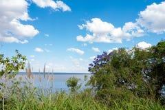 Όμορφος μπλε ουρανός με τα άσπρα σύννεφα και ορίζοντας του Ρίο de Λα Plata με τη βλάστηση στο πρώτο πλάνο Στοκ εικόνες με δικαίωμα ελεύθερης χρήσης