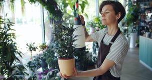 Όμορφος νέος γυναικείος ανθοκόμος που ψεκάζει τις πράσινες σε δοχείο εγκαταστάσεις στο ανθοπωλείο