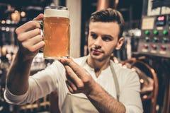 Όμορφος νέος σερβιτόρος Στοκ φωτογραφία με δικαίωμα ελεύθερης χρήσης