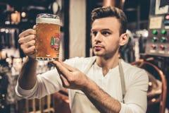 Όμορφος νέος σερβιτόρος Στοκ Φωτογραφία