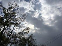 Όμορφος νεφελώδης ουρανός, δέντρα Στοκ Φωτογραφίες