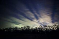 όμορφος νυχτερινός ουρανός, ο γαλακτώδης τρόπος και τα δέντρα Στοκ Εικόνα