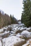 Όμορφος ποταμός πετρών στο χειμερινό βουνό - Vitosha, Βουλγαρία Στοκ φωτογραφίες με δικαίωμα ελεύθερης χρήσης