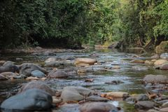 Όμορφος ποταμός στη Βενεζουέλα στοκ εικόνα με δικαίωμα ελεύθερης χρήσης