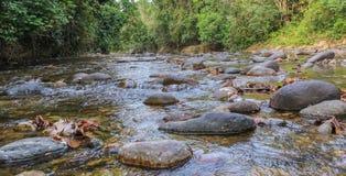 Όμορφος ποταμός στη Βενεζουέλα στοκ φωτογραφία
