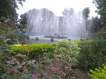Όμορφος που βλέπει στο πάρκο στοκ φωτογραφίες