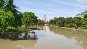 Όμορφος πράσινος βοτανικός κήπος με το μακρύ κανάλι στο δημόσιο πάρκο Chatuchak απόθεμα βίντεο