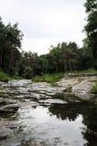 Όμορφος πράσινος δενδρολογικός κήπος στο πάρκο Sofiyivka στοκ εικόνες