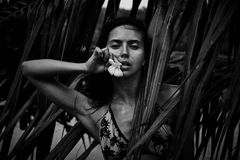 Όμορφος προκλητικός όμορφος θερινός τροπικός φοίνικας π γυναικών brunette Στοκ Εικόνες