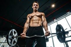 Όμορφος πρότυπος νεαρός άνδρας που επιλύει στη γυμναστική Στοκ Εικόνα