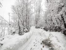 Όμορφος δρόμος το χειμώνα στην Ινδία Στοκ εικόνα με δικαίωμα ελεύθερης χρήσης