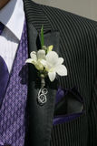 Όμορφος σε ένα κοστούμι και έναν δεσμό Στοκ Φωτογραφίες