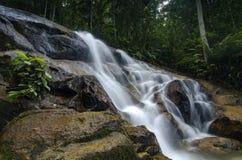 Όμορφος στη φύση, καταπληκτικός πέφτοντας απότομα τροπικός καταρράκτης υγρός και mossy βράχος, Στοκ Φωτογραφία