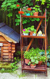 Όμορφος σχεδιασμένος καλοκαίρι κήπος με το σπίτι σκυλιών και το ξύλινο ράφι Στοκ Εικόνα