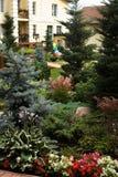 Όμορφος σχεδιασμένος καλοκαίρι κήπος Στοκ Εικόνες