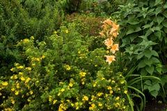 Όμορφος σχεδιασμένος καλοκαίρι κήπος Στοκ εικόνα με δικαίωμα ελεύθερης χρήσης