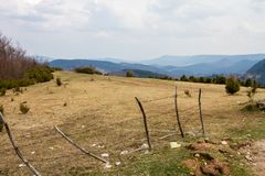 Όμορφος τομέας με τα μπλε βουνά χλόης στο υπόβαθρο και τα χνουδωτά σύννεφα ανωτέρω στοκ φωτογραφία με δικαίωμα ελεύθερης χρήσης