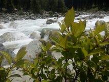 Όμορφος τρέχοντας ποταμός Στοκ Εικόνες