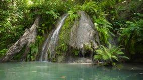 όμορφος τροπικός καταρράκτης Νησί των Φιλιππινών Κεμπού φιλμ μικρού μήκους