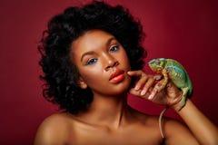 Όμορφος χαμαιλέοντας εκμετάλλευσης γυναικών στοκ φωτογραφίες με δικαίωμα ελεύθερης χρήσης