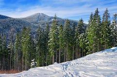 όμορφος χειμώνας ανατολής βουνών τοπίων Στοκ Εικόνα
