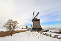 όμορφος χειμώνας ανεμόμυ&lamb στοκ εικόνες με δικαίωμα ελεύθερης χρήσης