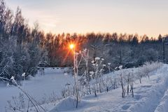 όμορφος χειμώνας ηλιοβασιλέματος Στοκ Εικόνα