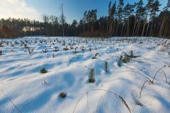 όμορφος χειμώνας ηλιοβασιλέματος Στοκ Φωτογραφίες