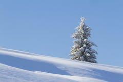 όμορφος χειμώνας ιστορίας χιονιού εξοχικών σπιτιών φινλανδικός δασικός κόκκινος s Στοκ Εικόνα
