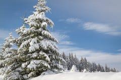 όμορφος χειμώνας ιστορίας χιονιού εξοχικών σπιτιών φινλανδικός δασικός κόκκινος s Στοκ φωτογραφίες με δικαίωμα ελεύθερης χρήσης