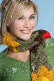 όμορφος χειμώνας κοριτσ&iot Στοκ Εικόνα