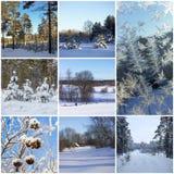 όμορφος χειμώνας κολάζ Στοκ Εικόνες