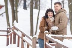 όμορφος χειμώνας πάρκων ζ&epsilo Στοκ φωτογραφίες με δικαίωμα ελεύθερης χρήσης