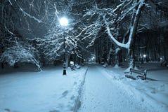 όμορφος χειμώνας πάρκων Στοκ φωτογραφία με δικαίωμα ελεύθερης χρήσης