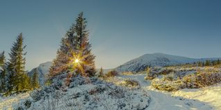 όμορφος χειμώνας πανοράμα& στοκ εικόνες