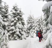 όμορφος χειμώνας τοπίων Στοκ Εικόνα