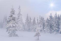 όμορφος χειμώνας τοπίων Στοκ εικόνα με δικαίωμα ελεύθερης χρήσης