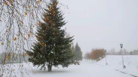 Όμορφος χειμώνας τρόπων δέντρων αλεών πάρκων κατά τη διάρκεια των βαθιών χιονοπτώσεων σε σε αργή κίνηση 1920x1080 απόθεμα βίντεο