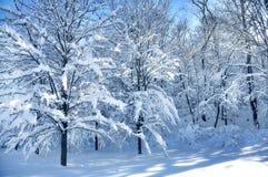 όμορφος χειμώνας Στοκ εικόνα με δικαίωμα ελεύθερης χρήσης