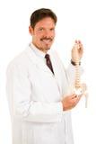 όμορφος chiropractor που απομονώνε& Στοκ Εικόνες