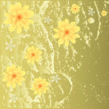 όμορφος floral ανασκόπησης στοκ φωτογραφία με δικαίωμα ελεύθερης χρήσης