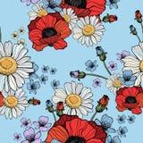 Όμορφο άγριο σχέδιο παπαρουνών λουλουδιών Στοκ Εικόνες