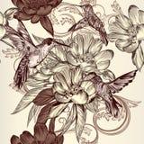 Όμορφο άνευ ραφής διανυσματικό σχέδιο με τα κολίβρια, λουλούδια και Στοκ Εικόνες