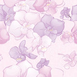 Όμορφο άνευ ραφής σχέδιο με τα λουλούδια ορχιδεών Στοκ Εικόνα
