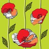 Όμορφο άνευ ραφής σχέδιο με τις κόκκινες παπαρούνες σε ένα ανοικτό πράσινο υπόβαθρο Στοκ Φωτογραφίες