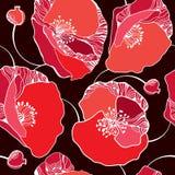 Όμορφο άνευ ραφής σχέδιο με τις κόκκινες παπαρούνες σε ένα σκοτεινό υπόβαθρο Στοκ Εικόνες