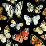 Όμορφο άνευ ραφής σχέδιο πεταλούδων watercolor Στοκ Φωτογραφίες