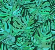 Όμορφο άνευ ραφής τροπικό υπόβαθρο σχεδίων ζουγκλών floral Στοκ Φωτογραφία