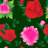Όμορφο άνευ ραφής υπόβαθρο με τα μεγάλα τριαντάφυλλα λουλουδιών και peonies διανυσματική απεικόνιση
